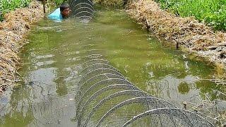 getlinkyoutube.com-โชว์โง่ดักปลาขวางคลองยาว 30 ห่วง แค่ครึ่งวันก็รู้เรื่อง The best Thailand fishing-net show