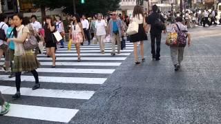 getlinkyoutube.com-Walking around Shibuya Tokyo Japan