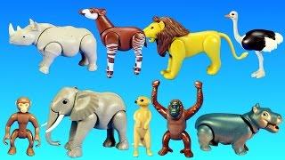 getlinkyoutube.com-Playmobil Safari Wild Animals Buiding Toy Sets Collection For Kids