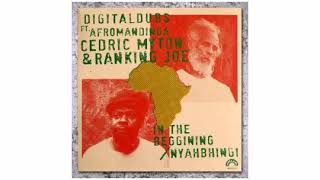 Digital Dubs / Afromandinga / Cedric Myton /  - In The Beggining/ Nyahbhingi - 12