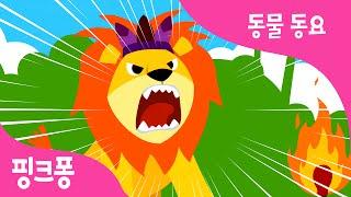동물의 왕 사자 | 동물동요 | 핑크퐁! 인기동요