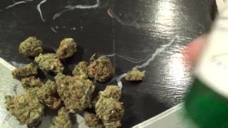 CT WEED REVIEWS #326 Dispensary STRAIN: MOB BOSS