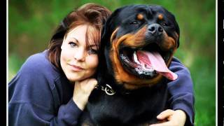 "getlinkyoutube.com-Rottweiler ""The Best Dog"""