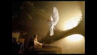 getlinkyoutube.com-AMISTADES PELIGROSAS- ANGELUS (Video 2013).
