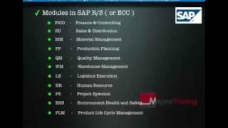 getlinkyoutube.com-SAP - What is SAP?
