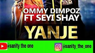 Ommy Dimpoz-Yanje ft Seyi Shae(chat lyrical video) width=