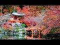 Phép lạ tỏ tường tại Nagasaki có thể bạn chưa từng biết, thông điệp Đức Mẹ Akita