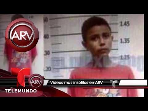 Al Rojo Vivo | Las 10 historias más insólitas que se presentaron en ARV en el 2014 | Telemundo ARV