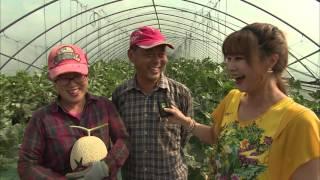 getlinkyoutube.com-[11] 스마트팜 MASTER-우리농촌이 달라지고 있다