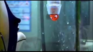 getlinkyoutube.com-Alla Ricerca di Nemo - Scena Acquario - La lezione di Branchia