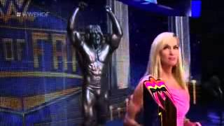 getlinkyoutube.com-WWE Hall of Fame 2015 28 March 2015. Ultimate War