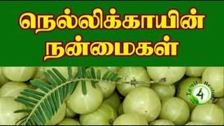 getlinkyoutube.com-நெல்லிக்காயின் நன்மைகள்-amla benefits tamil