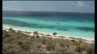 DREFF - Trailer Reserva de la Biosfera: Jaragua, Bahoruco y Enriquillo (Jaragua)