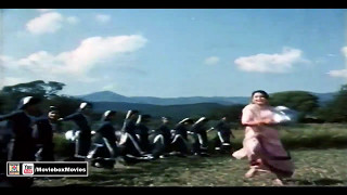 GARWA CHANDI DA - NOOR JEHAN - SANGEETA - PAKISTANI FILM NISHAN