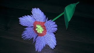 getlinkyoutube.com-3D origami flower primula primrose tutorial (instruction)