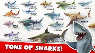 getlinkyoutube.com-Hungry Shark World All Sharks and How To Get