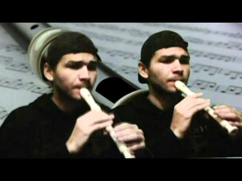 Dueto de flauta doce-Air Allegro