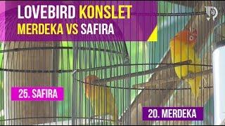 Lovebird Konslet MERDEKA vs SAFIRA   Event JokerOSs Cup 1