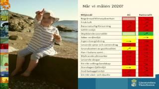 Miljö- och energipolitik som drivkraft för innovationer -  Lotta Ström