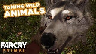 getlinkyoutube.com-Taming Wild Beasts - Far Cry Primal Gameplay