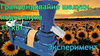 getlinkyoutube.com-Гранулятор 11 кВт., гранулирование шулухи подсолнечника