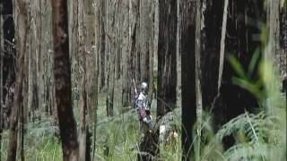 getlinkyoutube.com-Boba Fett: Wrath Of The Mandalorian