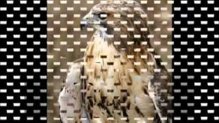 getlinkyoutube.com-مسحوب رهيب - شيلة سعد اليامي - YouTube.FLV