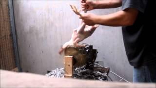 getlinkyoutube.com-Chicken Plucker (Hühnerrupfmaschine)