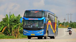 getlinkyoutube.com-Mengejar Bus Medan Jaya scania k360 & Putra Pelangi 2542