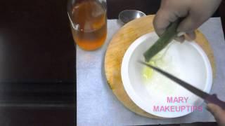 getlinkyoutube.com-¿la mejor mascarilla para el cabello maltratado? ¡aloe vera y miel! ;)