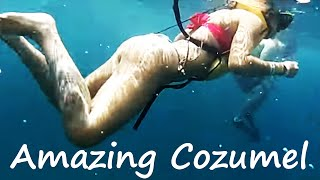 getlinkyoutube.com-Cozumel Snorkeling