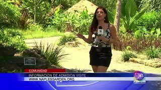 Gaby Romero nos presenta un lugar milenario en el Jardín Botánico de Naples