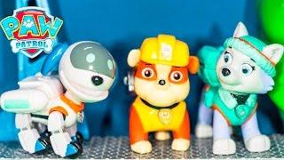 getlinkyoutube.com-PAW PATROL Nickelodeon  RoboDog 3 Pack Robo Dog  + Everest + Rubble Toys Video Unboxing