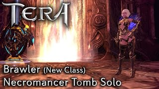 getlinkyoutube.com-TERA KR | Brawler (New Class) | Necromancer Tomb Solo