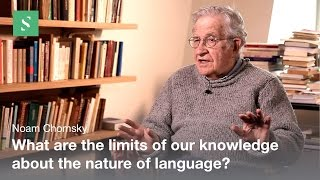 Language Design - Noam Chomsky
