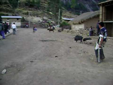 Chacolla - Yapuy 2008 fiesta tradicional - juego de toros 04