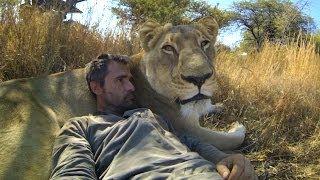 getlinkyoutube.com-GoPro: Lions - The New Endangered Species?
