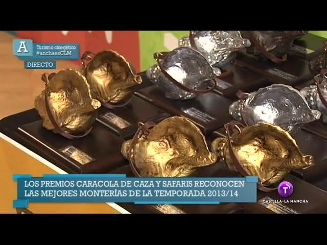 Premios Caracola 2014 en Radio Televisión de Castilla-La Mancha