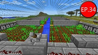 getlinkyoutube.com-TAEEXZENFIRE Minecraft (1.8.8) - Episode 34 - ฟาร์มเก็บเกี่ยวข้าวอัตโนมัติเสร็จสมบูรณ์