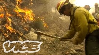 How to Fight Forest Fires
