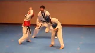 Funny - Taekwondo fight - We no speak Americano width=