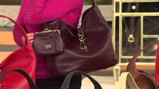 getlinkyoutube.com-Dooney & Bourke Leather Hobo with Logo Lock and Accessories with Lisa Robertson