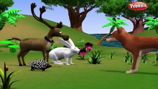 getlinkyoutube.com-Rabbit and Hedgehog | পশু গল্প | 3D Moral Stories For Kids in Bengali | Animal Stories in Bengali