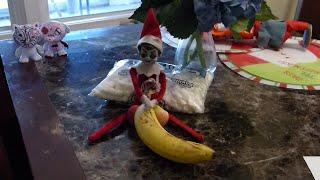 getlinkyoutube.com-Very naughty elf on the shelf!