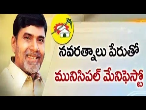 TDP Focus On Municipal Elections