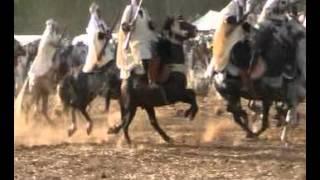 getlinkyoutube.com-ركوب الخيل في  حفل سيدي احمد بن عبد الله شلف 12.10.2015