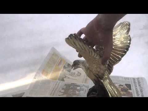 Pintando a aguia de dourado
