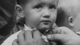 JAWA-ČZ - XXX. šestidenní ( XXX. ISDT 1955 )