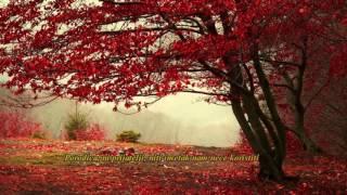 Maher Zain   Jannah | ماهر زين   جنة (Bosanski Prijevod)