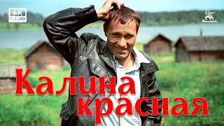 flushyoutube.com-Калина красная